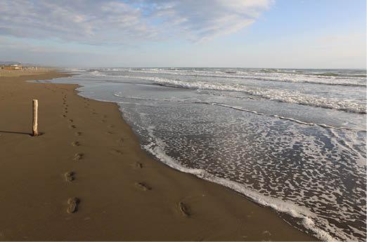 Велика Пляжа